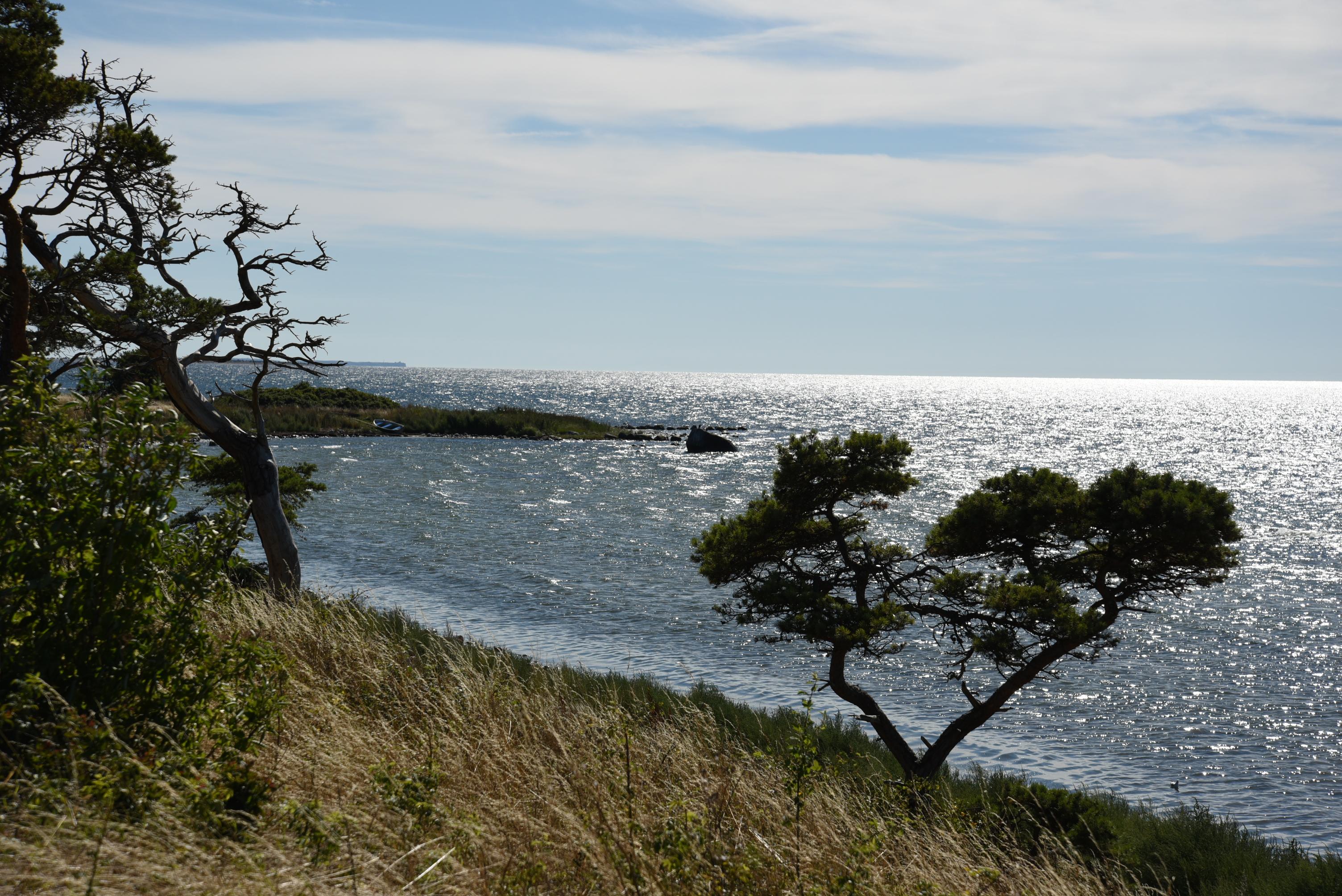 Gotland västkusten